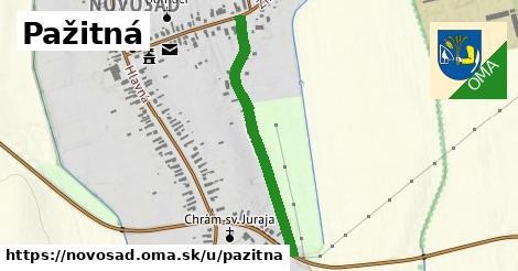 ilustračný obrázok k Pažitná, Novosad