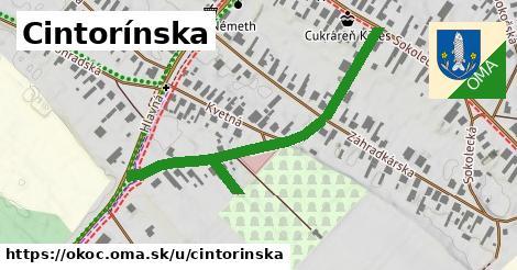 ilustrácia k Cintorínska, Okoč - 374m