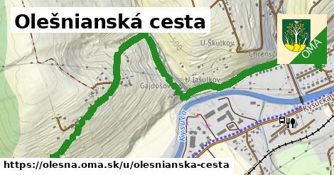ilustračný obrázok k Olešnianská cesta, Olešná