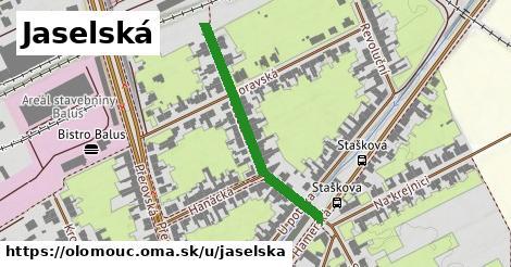 ilustrácia k Jaselská, Olomouc - 316m