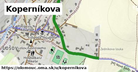 ilustrácia k Koperníkova, Olomouc - 510m