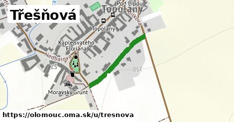 ilustrácia k Třešňová, Olomouc - 236m