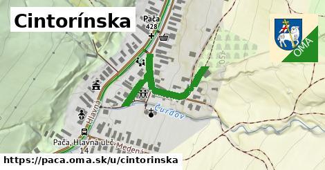 ilustrácia k Cintorínska, Pača - 326m