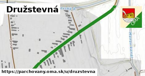 ilustrácia k Družstevná, Parchovany - 551m