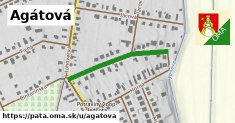 ilustračný obrázok k Agátová, Pata