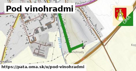 ilustrácia k Pod Vinohradmi, Pata - 503m