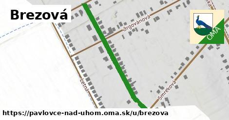 ilustrácia k Brezová, Pavlovce nad Uhom - 411m