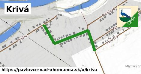ilustrácia k Krivá, Pavlovce nad Uhom - 416m