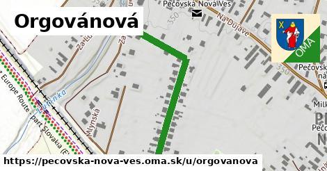 ilustrácia k Orgovánová, Pečovská Nová Ves - 433m