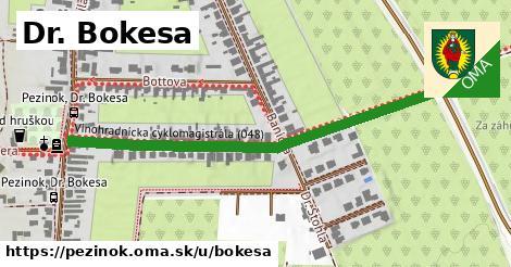 ilustračný obrázok k Dr. Bokesa, Pezinok