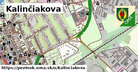 ilustračný obrázok k Kalinčiakova, Pezinok