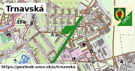 ilustračný obrázok k Trnavská, Pezinok