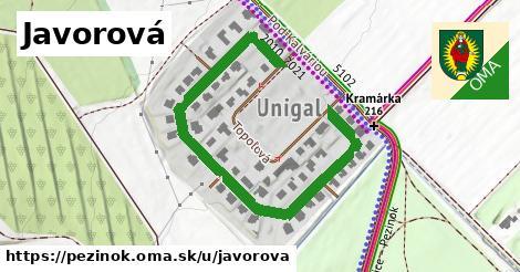 ilustrácia k Javorová, Pezinok - 644m