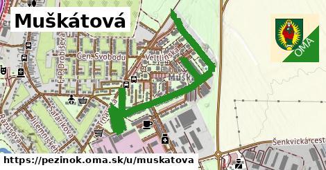 ilustrácia k Muškátová, Pezinok - 457m
