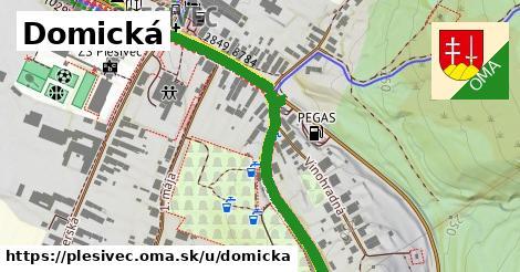 ilustrácia k Domická, Plešivec - 0,92km