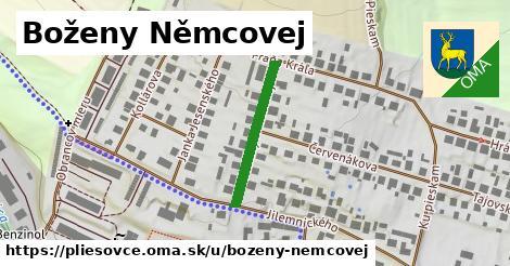 ilustračný obrázok k Boženy Němcovej, Pliešovce