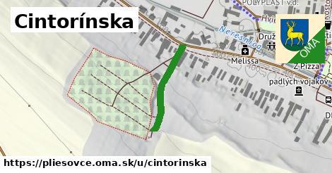 ilustrácia k Cintorínska, Pliešovce - 213m