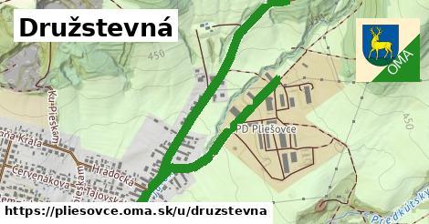 ilustrácia k Družstevná, Pliešovce - 2,4km