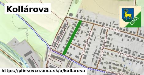ilustrácia k Kollárova, Pliešovce - 199m