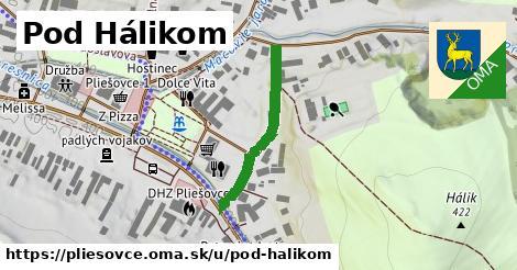 ilustračný obrázok k Pod Hálikom, Pliešovce