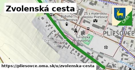 ilustrácia k Zvolenská cesta, Pliešovce - 580m