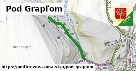 ilustrácia k Pod Grapľom, Podbrezová - 307m