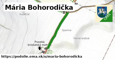 ilustrácia k Mária Bohorodička, Podolie - 529m