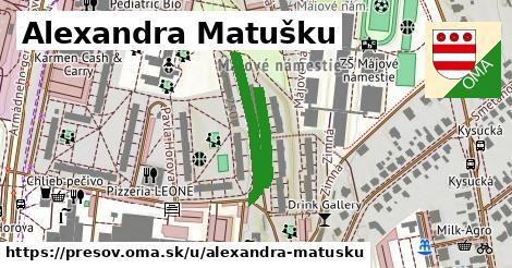 ilustračný obrázok k Alexandra Matušku, Prešov
