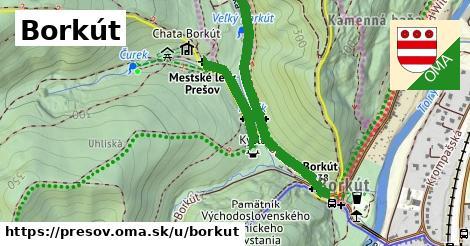 ilustračný obrázok k Borkut, Prešov