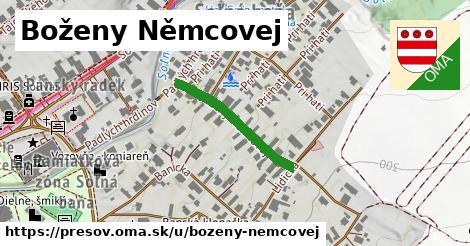 ilustrácia k Boženy Němcovej, Prešov - 230m