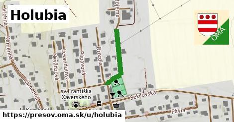 ilustrácia k Holubia, Prešov - 205m