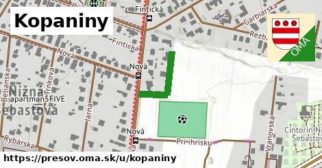ilustračný obrázok k Kopaniny, Prešov