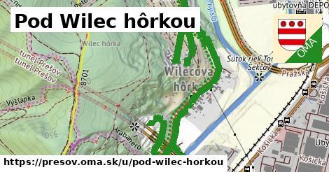 ilustračný obrázok k Pod Wilec hôrkou, Prešov
