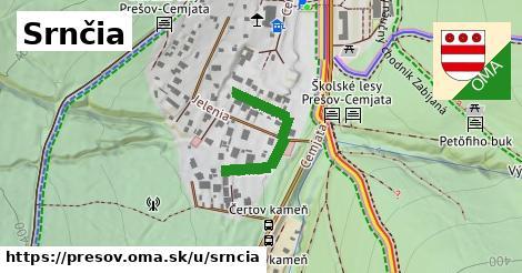 ilustrácia k Srnčia, Prešov - 230m