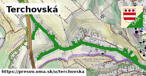 ilustrácia k Terchovská, Prešov - 1,71km