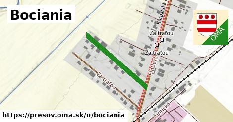 ilustrácia k Bociania, Prešov - 243m