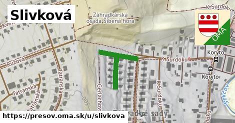 ilustrácia k Slivková, Prešov - 232m