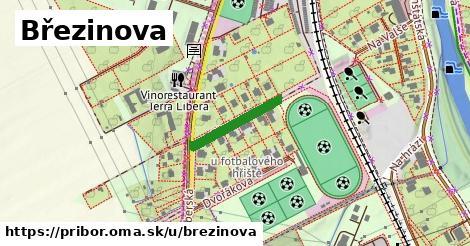 ilustrácia k Březinova, Příbor - 160m