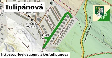 ilustrácia k Tulipánová, Prievidza - 288m