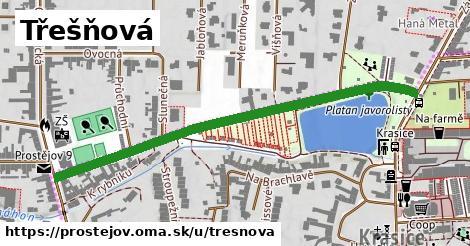ilustrácia k Třešňová, Prostějov - 588m
