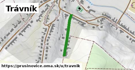 ilustrácia k Trávník, Prusinovice - 235m