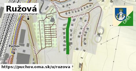 ilustrácia k Ružová, Púchov - 207m