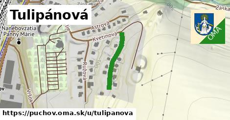 ilustrácia k Tulipánová, Púchov - 200m