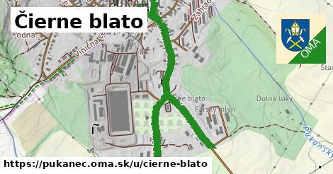 ilustrácia k Čierne blato, Pukanec - 1,25km