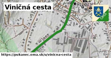 ilustrácia k Viničná cesta, Pukanec - 545m