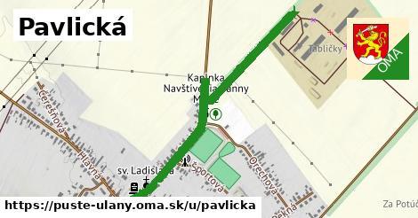 ilustrácia k Pavlická, Pusté Úľany - 580m