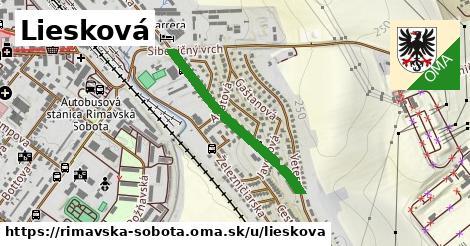 ilustrácia k Liesková, Rimavská Sobota - 613m