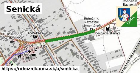 ilustrácia k Senická, Rohožník - 270m