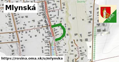 ilustrácia k Mlynská, Rosina - 194m