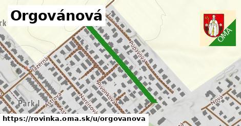 ilustrácia k Orgovánová, Rovinka - 320m